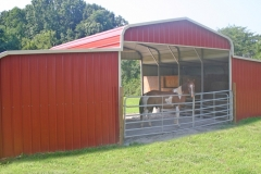 Regular Style Triple Wide Semi-Enclosed (and friendly horse)